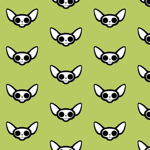 Sphynxie Bonez Sphynx Skull Cat with Green Background