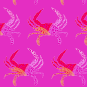 Colorful Crabs on Magenta