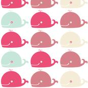 Baleine multicolore