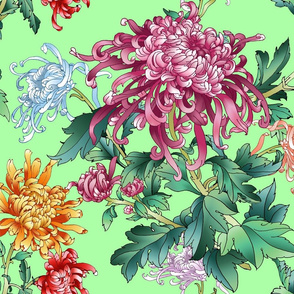 chrysantemum_mint_green
