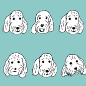 Spoodle Faces aqua