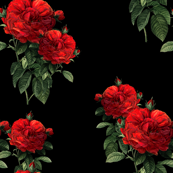 Redoute' Roses ~ Riot of Red ~Jumble ~ Blackmail