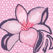 Rrlilyone_shop_thumb