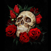 skull and roses 2