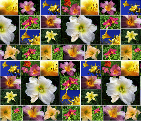 lily collage fabric by dkdemott on Spoonflower - custom fabric