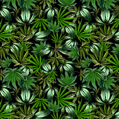 Painted Cannabis Leaves