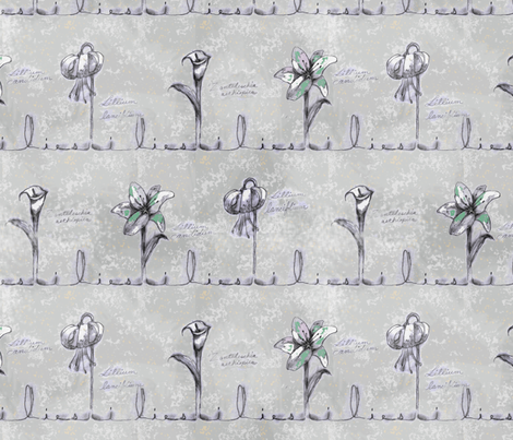 Lily Sketches fabric by joojoostrees on Spoonflower - custom fabric