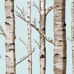 Birch Grove in Sky