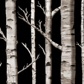 Birch Grove in Midnight Hush