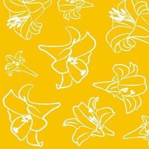 Goldenrod Lillywhite