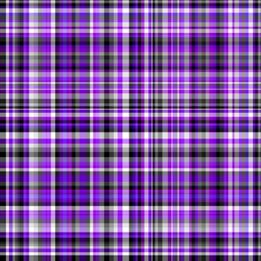 Ace Aware - Plaid in Asexual Awareness Colors (Black, White, Gray, Purple)