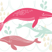 Whales Swimming Pink