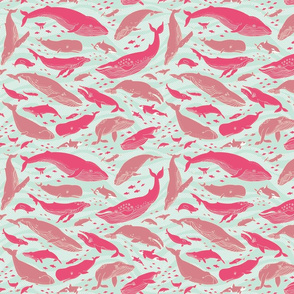 Whale Gathering Pink Small