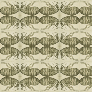 Micrographia Flea