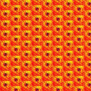 flower_fields_13