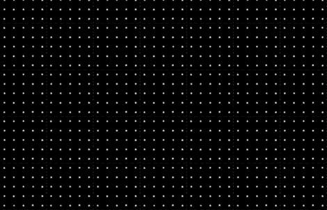 Stars in Black by Friztin fabric by friztin on Spoonflower - custom fabric