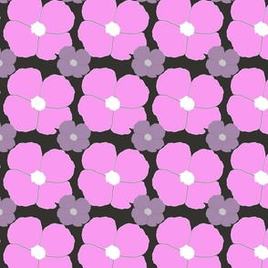 pink and purple impatiens