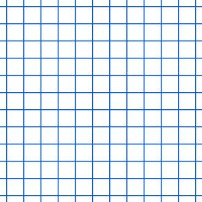 Blue On White Medium Grid