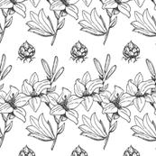 Lily Stripe - Graphite on White