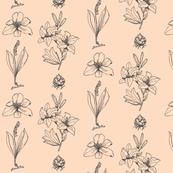 Lilium - Petal + Midnight