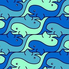 whale 2 x3 - cool