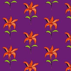 My Lily on Purple