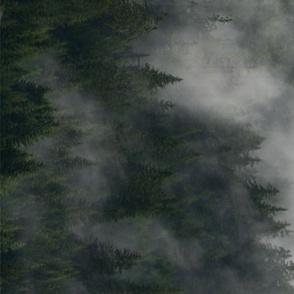 Misty Forest Border