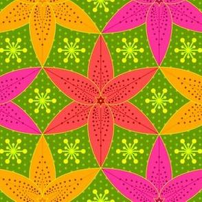 lilium 3