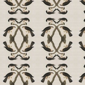 Audubon Hawk
