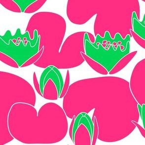 Funky Water Lilies