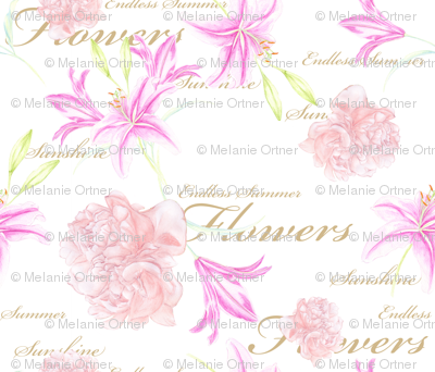 Lilly_Endless_Summer_rose150dpi