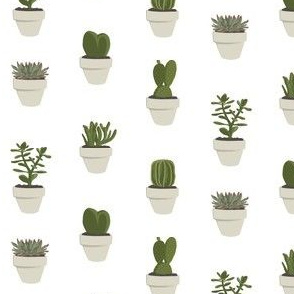 Cacti and succulent (White)