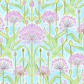 Allium Garden Blue