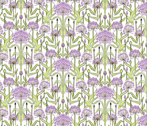 Allium Garden White 2