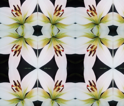 crealani lily fabric by crealani on Spoonflower - custom fabric