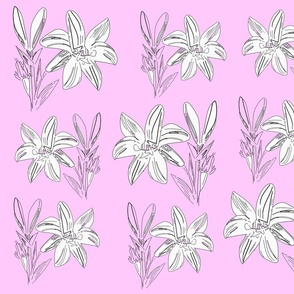 liliesinpink