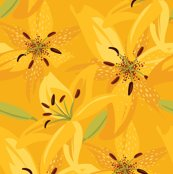 Rsunshine_day_lilies2-01_shop_thumb