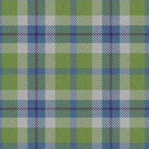 Blue and Green plaid