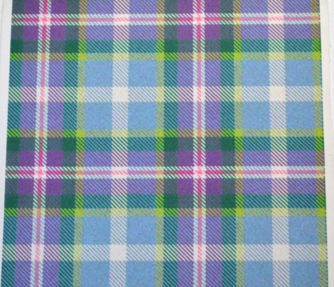 Purple, Cornflower and Green Plaid