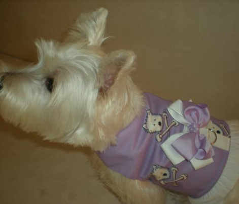LG Torrid Westies In Purple