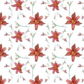 My_lilies