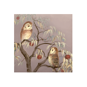 Owls and Pomeganates