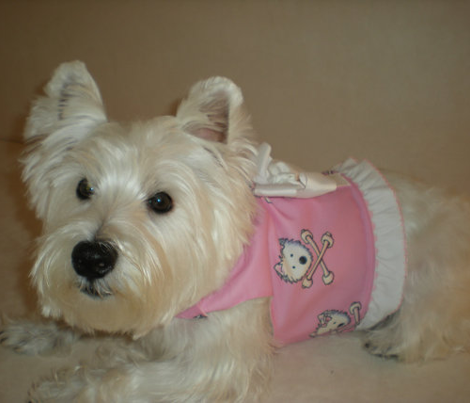 LG Torrid Westies On Pink