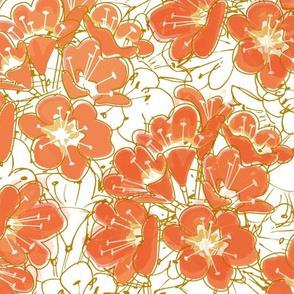 Kaffir Lilies
