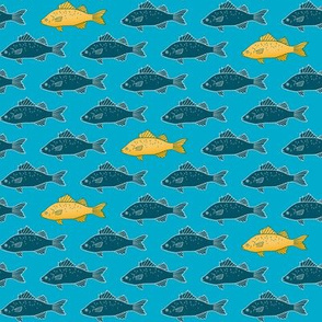 Fish - blue and gold