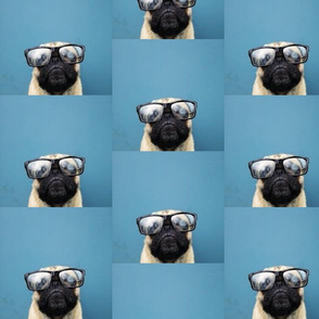 pug_in_glasses-ed
