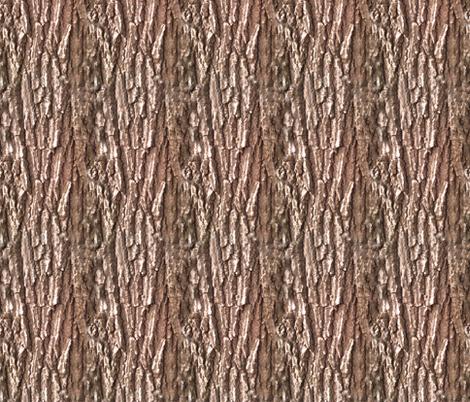 Oak Tree Bark Nature Theme