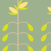 greenpeas lilies