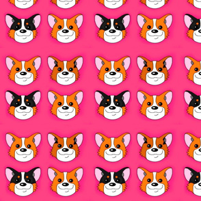 Pembroke Welsh Corgi on Pink