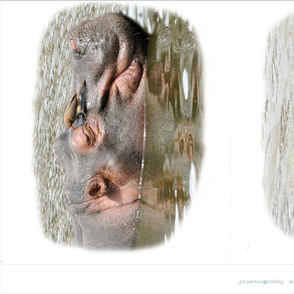 Three HIPPO pillowcases
